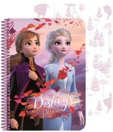 Disney Frozen2 Notitieboekje 3D - A5 Formaat