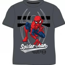 Spiderman T-shirt - Grijs