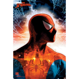 Spiderman Maxi Poster - Protector Of The City