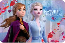Disney Frozen Placemat - Nature