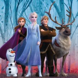 Disney Frozen2 Kussenhoesje - Characters