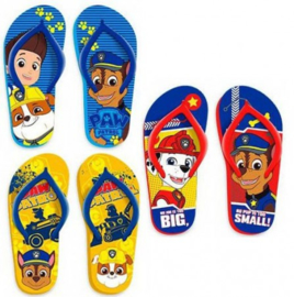 Paw Patrol Teenslippers - Multi