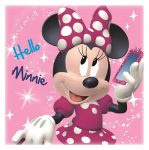 Minnie Mouse Magic Towel - Hello