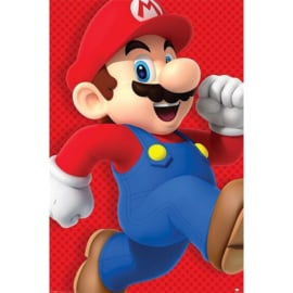 Super Mario Bros Maxi Poster - Run