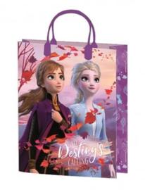 Disney Frozen Cadeautas