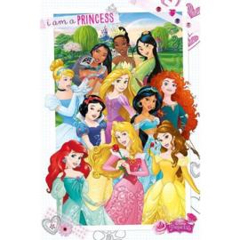 Disney Princess Maxi Poster