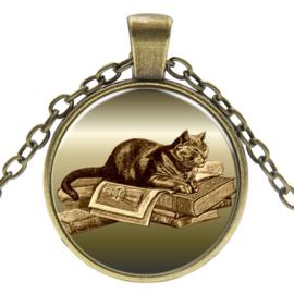 Ketting Soezende kat op boek