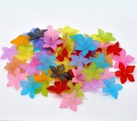 Kleurige bloemenmix mat