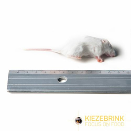 KB kleine muizen 8-15 G, 25 stuk