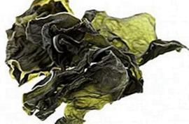 Kelp, super gezond voor de hond