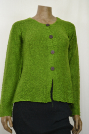 Billy B Vest Cardigan Carrie fern green