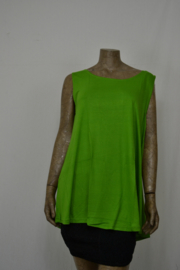 Normal Crazy Shirt  80 cm Top Aline piquen groen