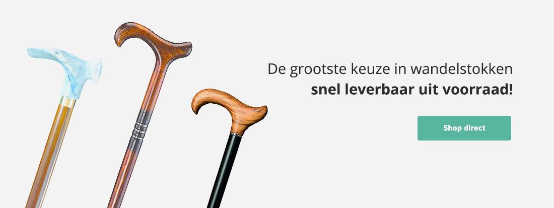 Wandelstok-wandelstokken.nl