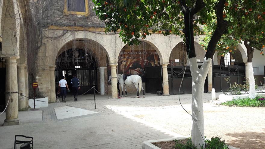 Koninklijke Andalusische School