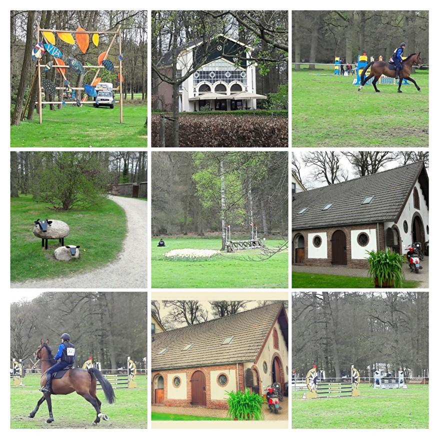 Musgo bij Maarsbergen Horse trials