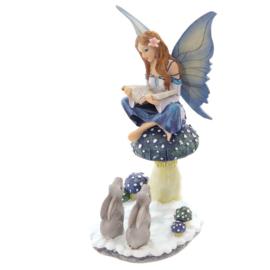 Fantasy, elfen en feeën