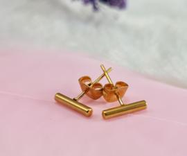 Oorbellen - staafjes - Studs - RVS - goudkleur