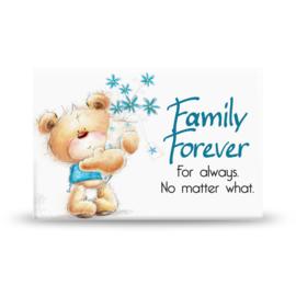 Magneet - Family Forever
