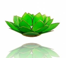 Sfeerlicht Lotus groen met zilverkleurige randen