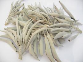 Witte Salie - clusters - 100 gram - grote zak