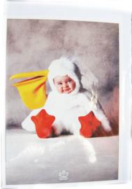 Postkaart met envelop - Pelicaan - Baby - 10,5 x 15 cm