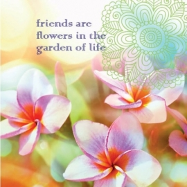 Dubbele kaart - friends are flowers - 14 x 14 cm
