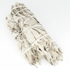 Witte salie - Smudgestick - 11,5 cm