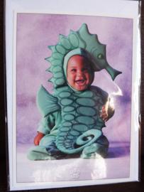 Postkaart met envelop - Zeepaardje - Baby - 10,5 x 15 cm