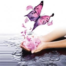 Reiki Tera Mai Treatment 45 min.