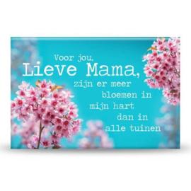 Magneet - Lieve Mama