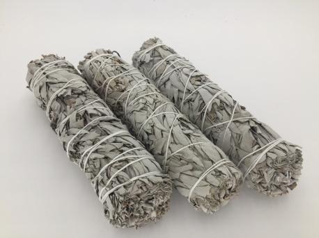 Witte Salie Smudge Stick XL - 23 cm - per stuk