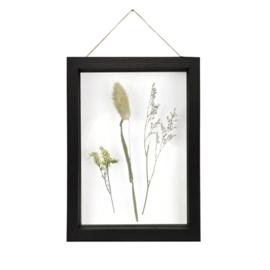 Fotolijst met droogbloemen zwart