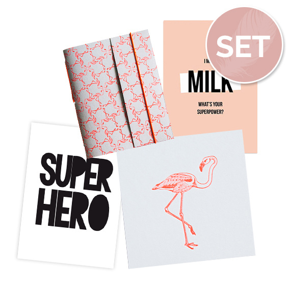 Set kaarten (3 st.) & notitieboekje 'Flamingo'