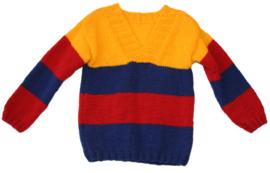 Modieuze jongens trui