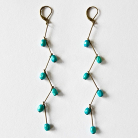 Wooden Galapagos turquoise grappes