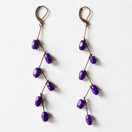 Plum purple grapes