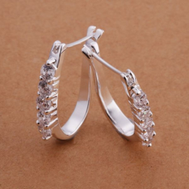Oorhangers van mooi zilver met flonkerende strass-steentjes