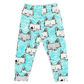 Mintblauw broekje van zachte tricot katoen met vosjes in maat 68-74