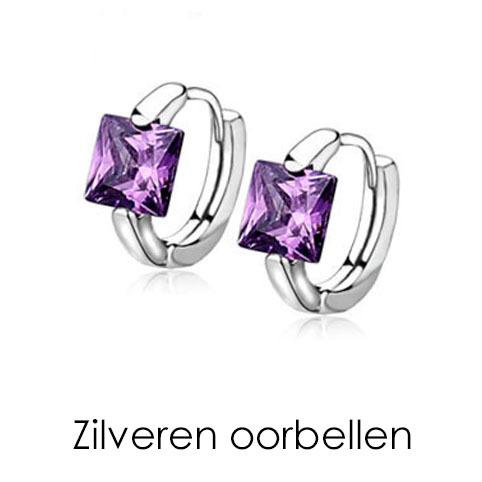 https://www.mevrouwsplinter.nl/c-3595354/oorbellen-van-zilver/