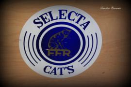 """Vintage fourniturenkastje/garenkastje """"Selecta FFR Cat's"""""""