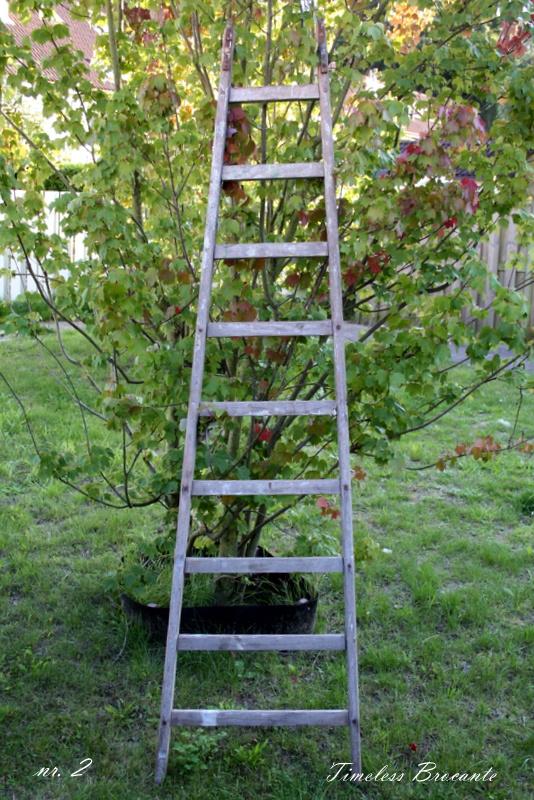 Oude houten puntladder/plukladder/ladder
