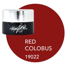 Virunga - Red Colobus