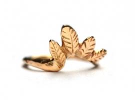 Ring met gouden tooi