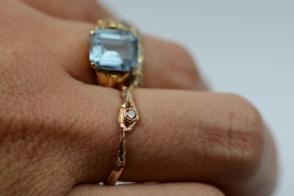 Fijne takjesring met bruine diamant