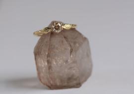 Ring met bolsjewiek diamant en blaadjes