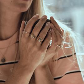 Dubbele ring met ronde salt & pepper diamant - GERESERVEERD VOOR D