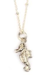 Zilveren zeepaardje