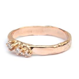 Ring Anemone