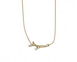 Golden coral branch