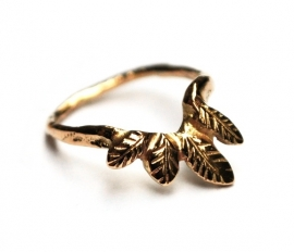 Ornamental gold ring